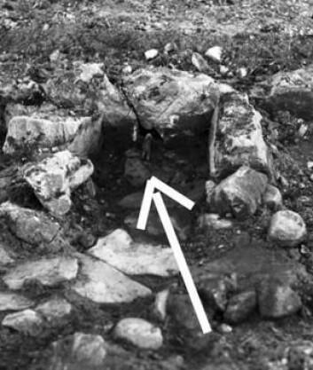 Den hodeløse bjørnefiguren var plassert slik at den «dykker» ned i ildstedet. Det får nå arkeologene til å tro at det er snakk om en hittil ukjent, rituell handling. (Foto: Nationalmuseet)