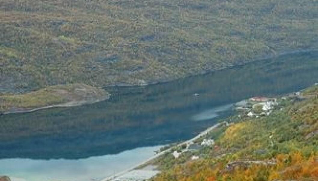 Langvatnet i Sulitjelma - vakkert, men forurenset fra tidligere gruvedrift. Eigil Iversen