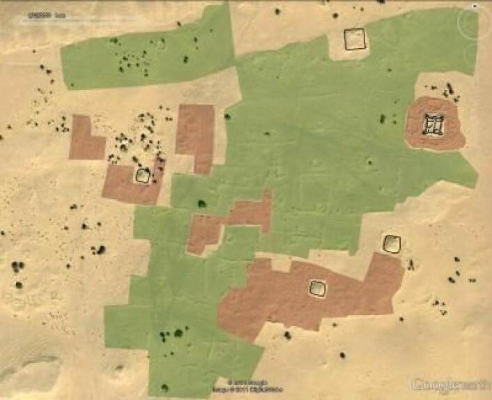 Illustrasjonen viser et satellittbilde av et ørkenområde i Libya. Arkeologene har tegnet inn befestede bygninger i sort, boligområder i rødt, og hager og dyrket mark i grønt. (Foto: (Illustrasjon: Google/DigitalGlobe))