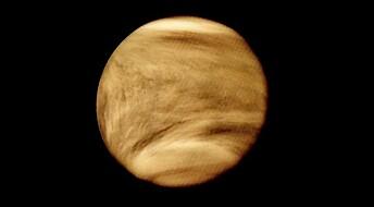 Slik kan liv eksistere i dråper i Venus-skyene