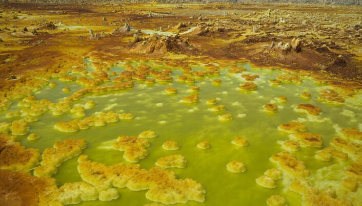 Formasjoner av salt og svovel i dammer i Dallol i Etiopia. Dette er et av de mest livsfiendtlige stedene i verden, men det er fortsatt gjestmildt sammenlignet med Venus.