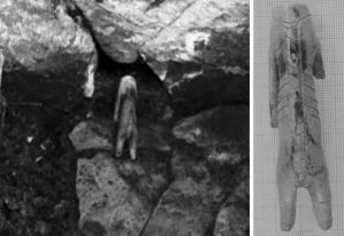 Figuren av hvalrosstann er bare 3,4 cm lang og kan være en viktig nøkkel til å forstå hvordan mennesker for mer enn 1000 år siden forsto forholdet mellom menneske og bjørn. (Foto: Nationalmuseet)