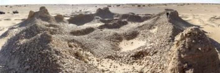 Bildet viser restene av en steinborg i den libyiske ørkenen. (Foto: Toby Savage)