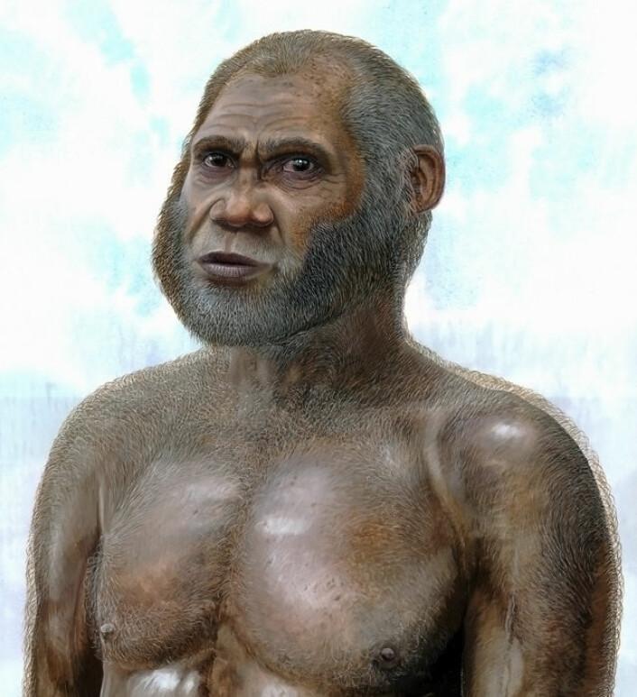 En kunstners framstilling av hvordan den hittil ukjente mennesketypen som holdt til i huler i det sørvestlige Kina mot slutten av siste istid kan ha sett ut. (Foto: (Illustrasjon: Peter Schouten))