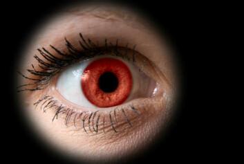 Hornhinnen er vårt vindu mot verden. Blir den uklar, mister du synet. (Illustrasjonsfoto: www.colourbox.no)