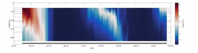 Temperatur i Rijpfjorden fra september 2018 til september 2020. Sommeren og høsten 2019 var betydelig kaldere enn 2018.