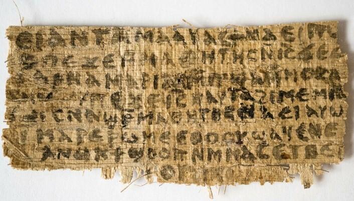 Jesu kones evangelium har blitt en het potet for religionshistorikere verden over. (Foto: Karen L. King, AP)
