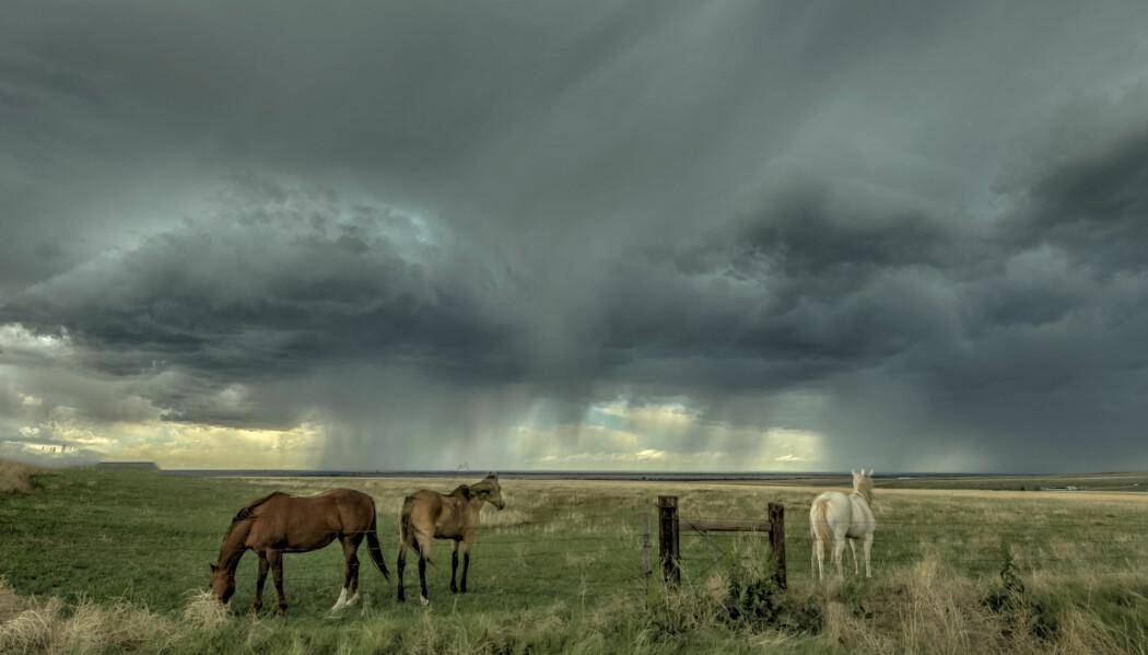 Storm i horisonten.