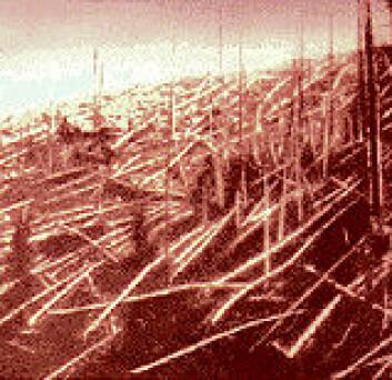 """""""Dette fotografiet ble tatt i Tunguska-området av den første ekspedisjonen dit i 1927, nesten tjue år etter meteorid-eksplosjonen."""""""