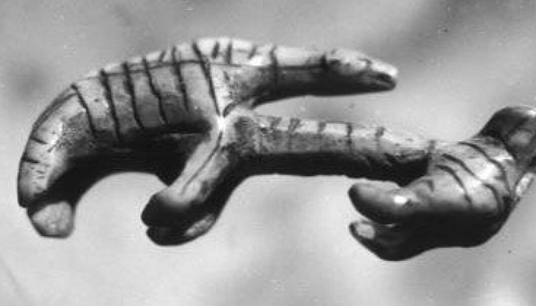Urfolk dyrket bjørnekult