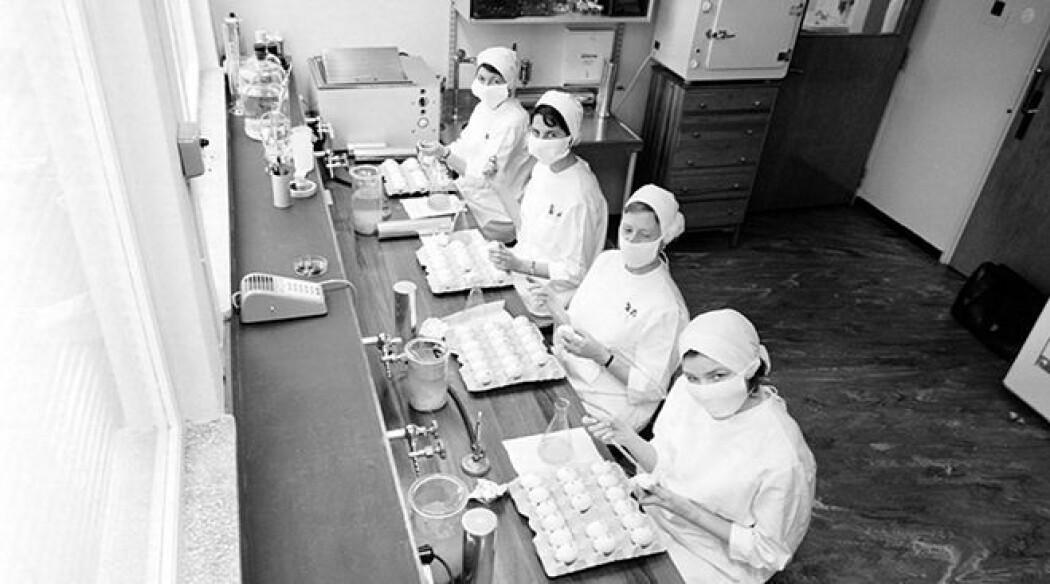 Folkehelseinstituttet kom på plass da staten ville øke kapasiteten til å utvikle vaksiner. Her er fire kvinner på FHIs influensalaboratorium i 1962.