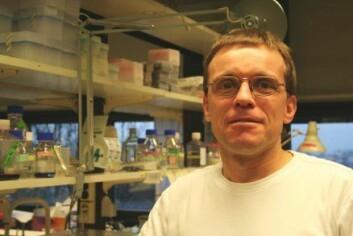 """""""Philippe Collas leder en forskningsgruppe ved Universitetet i Oslo som jobber med reprogrammering av celler. (Foto: Kristin S. Grønli)."""""""