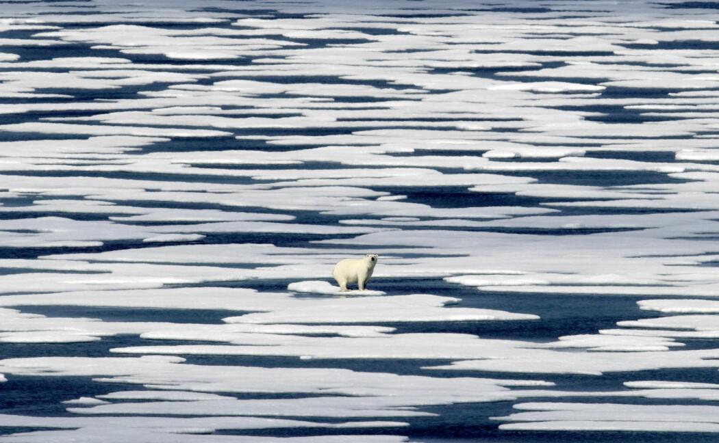 Isen i Arktis krympet til sitt nest laveste omfang i september – under fire millioner kvadratkilometer.