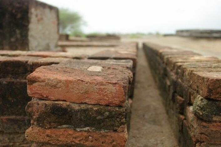 Indusfolket hadde en rik kultur for håndverk, og kunne jobbe med mange materialer. Arkeologer har både funnet fungerende, nøyaktige tommestokker og murstein basert på mål fra disse. (Foto: Flickr/Emmanuel DYAN)