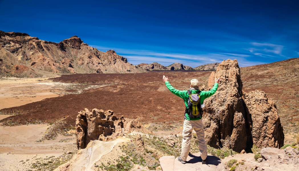 Har du vært på Kanariøyene eller på Island, så har du gått rundt i noen av de yngste landskapene på Jorda. Likevel er disse landskapene om lag ti ganger så gamle som Norges topografi med fjell, fjorder og daler. Dette bildet er tatt på kanariøya Tenerife.