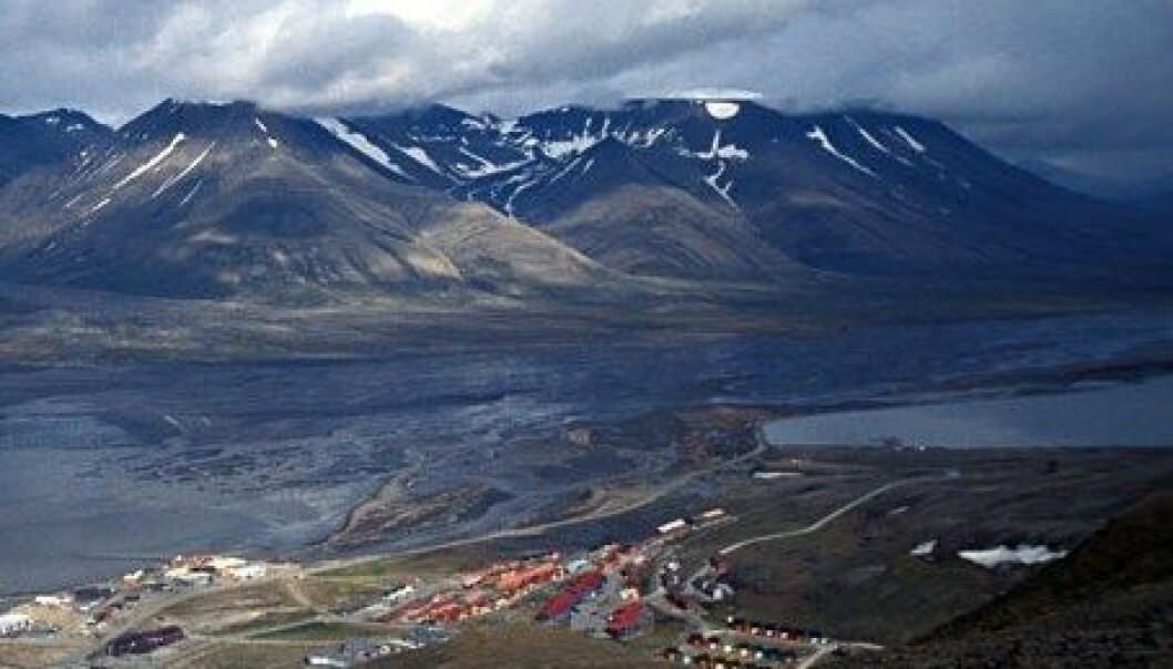 Forskere har gjort et overraskende funn av tropisk plankton nordvest for Svalbard. Bildet viser Longyearbyen i juli. Wikimedia Commons