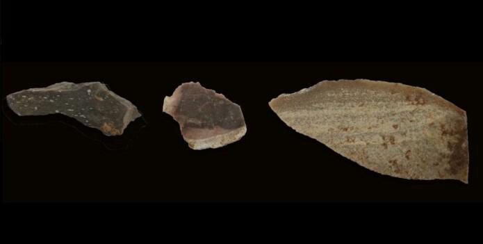 Bilde av de tre typer bearbeidet stein som forskerne så på. Lengst til høyre ser vi et knivblad.