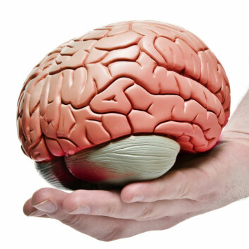 – Mindfulness-treningen kan minne om hjernevask. Men soldatene oppfatter det ikke som noe negativt – tvert imot, forteller Sita Kotnis.