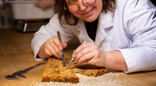 Vil lage glutenfrie produkter av norske råvarer