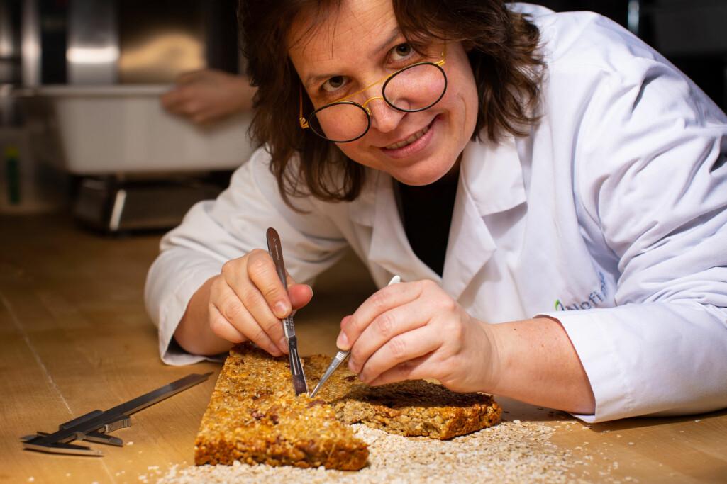 I dag finnes det ikke noen god og fullstendig oversikt over den primære glutenfrie produksjonen i Norge. Kartlegging blir derfor en viktig del av prosjektet til forsker Ann-Katrin Holtekjølen.