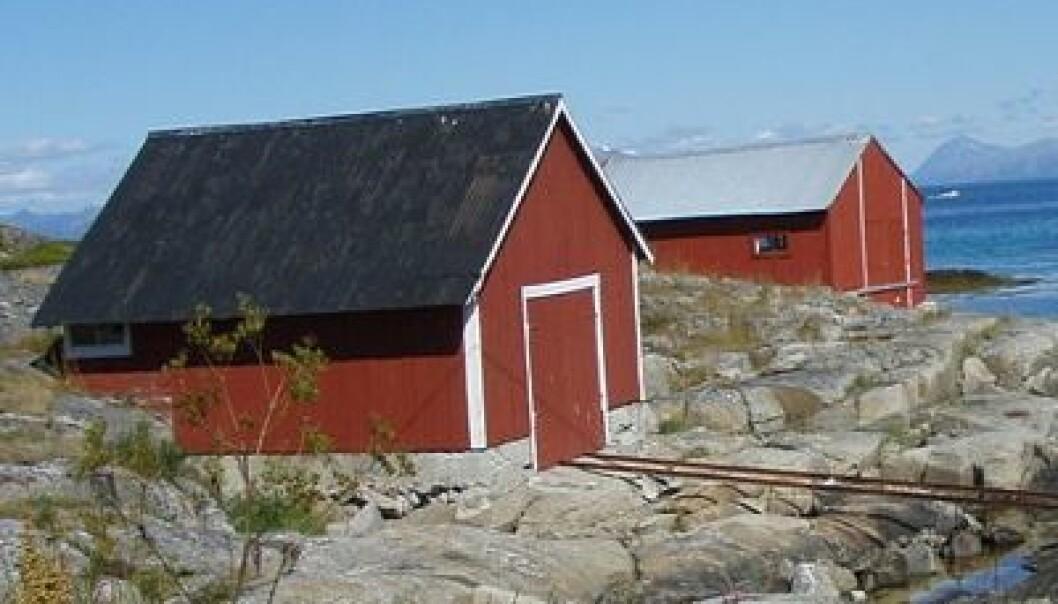 Turisme kommer ikke til å redde Nord-Norge