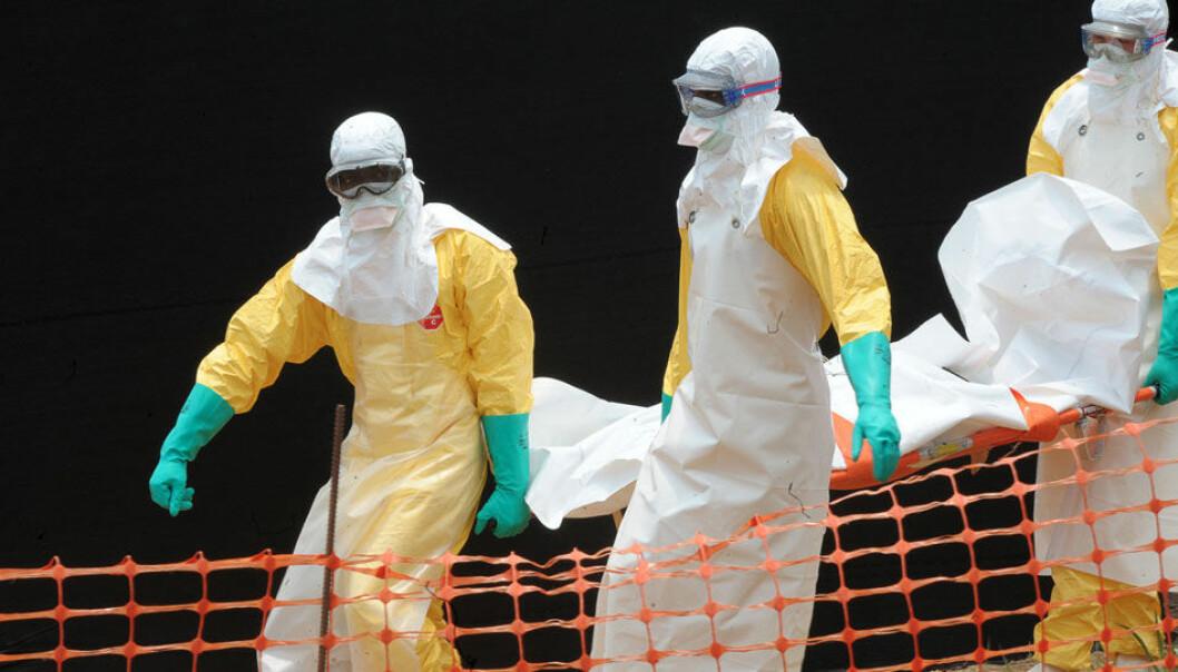 Doktorer fra Leger Uten Grenser bærer liket av en Ebola-rammet i Guekedou i Guinea. AFP