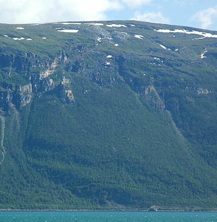 """Nordnesfjellet."""