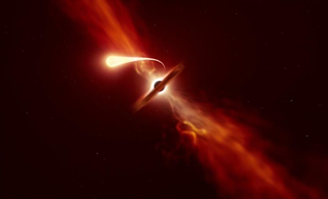 Slik har en kunstner forestilt seg spagettifiseringen. Forskerne så ikke hendelsen slik som på denne videoen, men de gjorde mange observasjoner av hendelsen, med teleskoper som fanger opp både synlig lys, ultrafiolett lys, radiobølger og røntgenstråler.