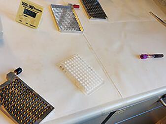 Utstyr for å analysera mange prøvar samstundes. Den kvite delen inneheld membranane, den blanke er elektrodane, dei mørke delane er høvesvis der prøven vert plassert og det den skal over i etter å ha passert membranen.