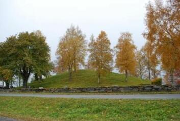 Gravhaugen på Alstadhaug i Levanger – et tradisjonelt, og fredet, kulturminne. (Foto: NIKU)