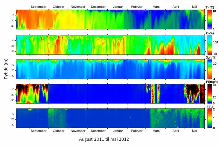 Grafisk framstilling av vannmiljøet fra overflaten og ned til bunnen i en laksemerd fra august 2011 til mai 2012, slik det presenteres i Velferdsmeteret. Grafikken viser, fra øverst til nederst, endringer i temperatur, O2-nivå, salinitet, klorofyll og partikkelinnhold. (Foto: (Skjermdump fra www.imr.no/welfaremeter))