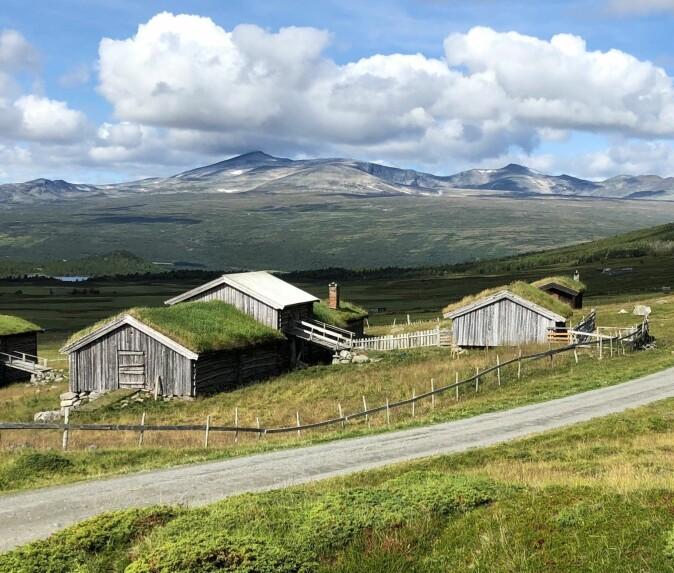 Kvarbergstetra er ei av dei gamle vintersetrene i Sjodalen. Til venstre i bildet ser vi fjøs med «måsatrev» for lagring av reinlav. Stova – bustadhuset – til høgre midt i bildet.
