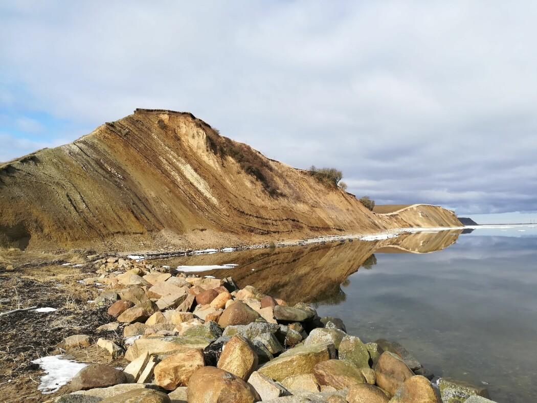 I Fur-formasjonen ved Ejerslev havn på øya Mors har forskere funnet verdens største kalkkrystall.