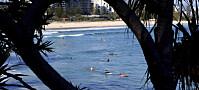Flest haidrap i Australia på 86 år