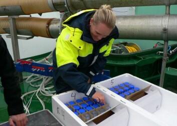 Vannprøver samles opp systematisk under fordelingsforsøket. (Foto: Randi Grøntvedt)