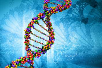 Bruken av DNA-bevis har blitt profesjonalisert, men fremdeles er det mange fallgruver knyttet til bruk av DNA-bevis i retten. (Illustrasjonsfoto: iStockphoto)