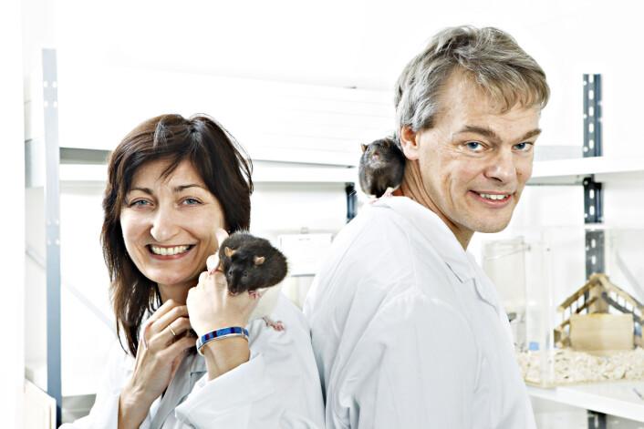 Professorene May-Britt og Edvard Moser, ekteparet som står i spissen for Moserlaboratoriet ved NTNU. (Foto: Geir Mogen/ NTNU) (Foto: Geir Mogen/NTNU)
