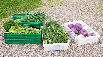 Det blir færre norske grønnsaker hvis vi ikke kan dyrke i torv