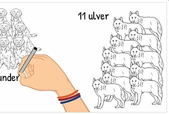 Blir ulver knyttet til mennesker?
