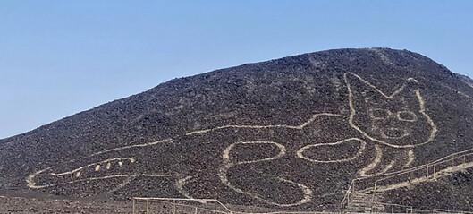 Kjempestor katt ble tegnet i ørkenen for 2000 år siden