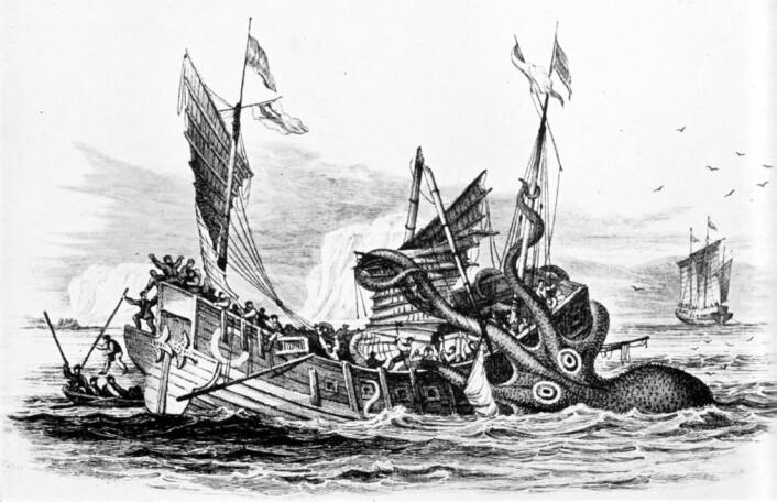 Det er ikke observert at kjempeblekkspruter har gått til angrep på mennesker eller båter i moderne tid. (Foto: (Illustrasjon: Pierre Denys de Montfort/Wikimedia Commons))