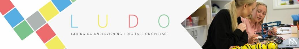 Læring og undervisning i digitale omgivelser (LUDO)