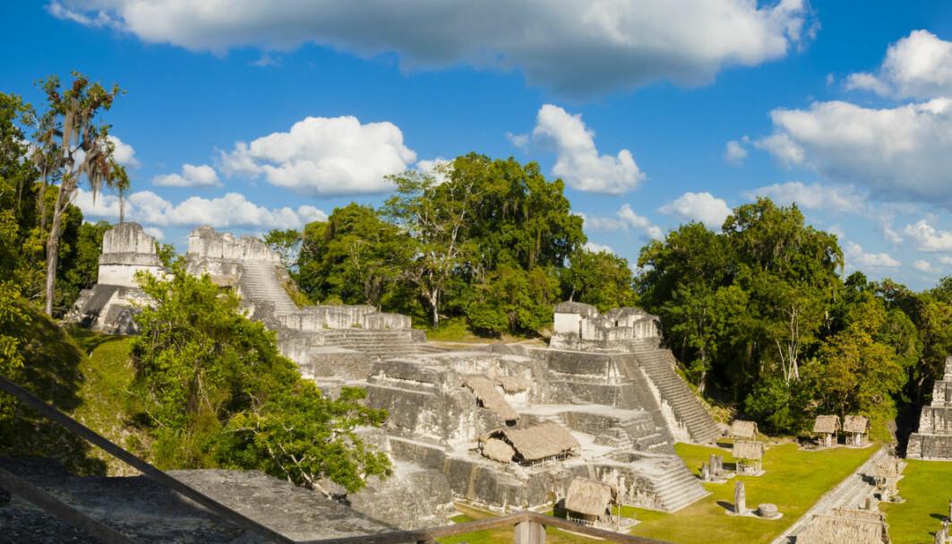 Mange tenker på storslagne templer og pyramider når de hører om mayafolkene. Men en ny, amerikansk studie tyder på at de var kreative ikke bare med bygningene sine.