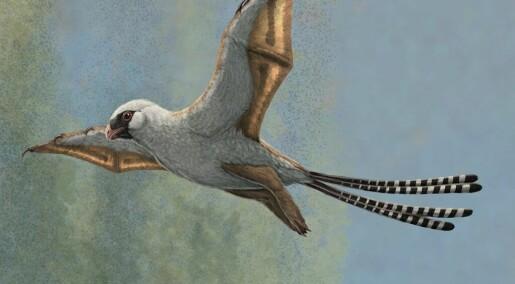 Dinosauren som kunne blitt en fugl