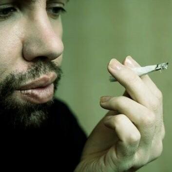 Kroppen produserer selv stoffer som kan gi samme rus som cannabis.  (Foto: Colourbox)