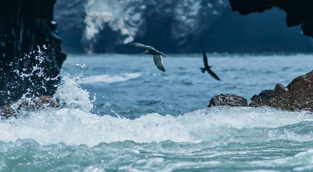 La Niña er været som får havet og atmosfæren til å danse