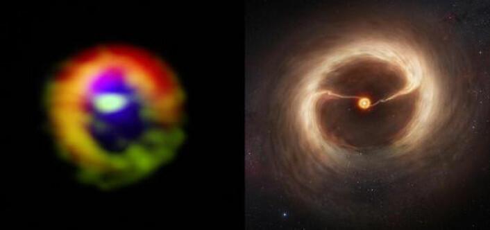 T.v: ALMA-bilde av en ung stjerne med store strømmer av gass og støv over det mørke gapet i skiven. T.h: Illustrasjon av det samme. Dette er den første direkte observasjonen av slike gasstrømmer, som trolig skaper kjempeplaneter. (Foto: (Foto/illustrasjon: ALMA (ESO/NAOJ/NRAO)/M. Kornmesser (ESO), S. Casassus et al.))