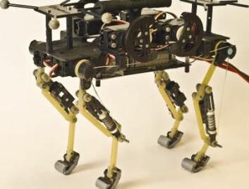 Roboten deler noen av trekkene med en ekte katt ved å være liten, og løpe ganske raskt og smidig. Hodet mangler derimot, slik at mjauing og andre lyder eventuelt gjenstår. (Foto: EPFLnews)