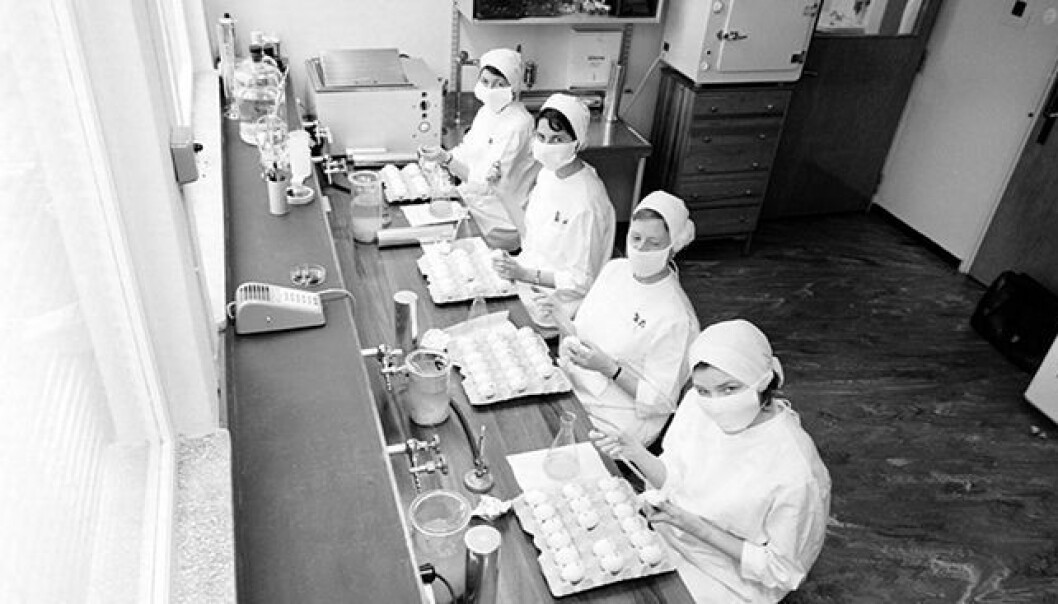 The Norwegian Institute of Public Health (Folkehelseinstituttet, FHI) was established when the government wanted to increase it's capacity to develop vaccines. Here are four women working at the FHI influenza laboratory in 1962.