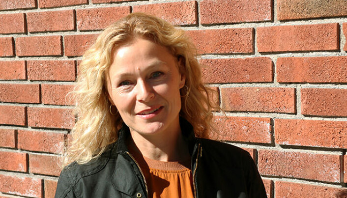 The idea that the government is responsible for public health, is not exclusively Norwegian, according to historian Sunniva Engh.